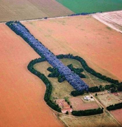 Šuma-gitara koja krije tužnu ljubavnu priču
