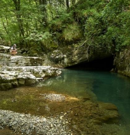Online kampanja - Glas umjetnika za spas rijeka Balkana