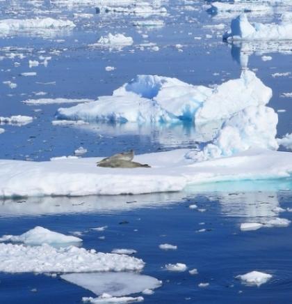 U 23 godine Zemlja je izgubila 28 trilijuna tona leda, a posljedice bi mogle biti dramatične