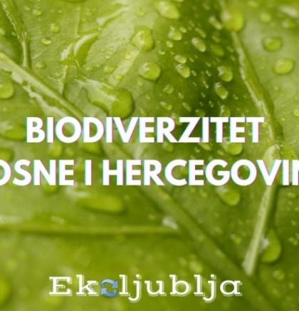 EKOLJUBLJA Biodiverzitet BiH: Živimo u veličanstvenim raznolikostima(VIDEO)