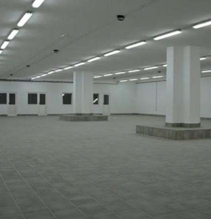 Dokumentarna izložba 'Collegium artisticum - 45 godina'