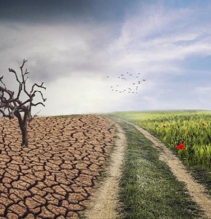 Znanstvenici: Prošla je godina jedna od tri najtoplije od početka mjerenja