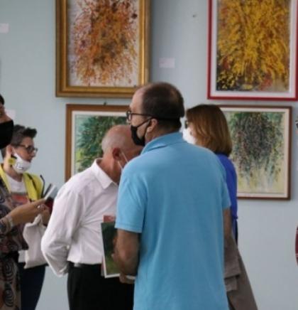 Izložba radova Mevludina Ekmečića postavljena u Bošnjačkom institutu