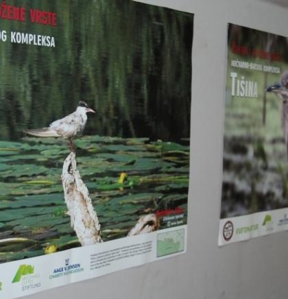 EKOLJUBLJA/Ornitofestival u Šamcu okupio stručnjake iz BiH i regije