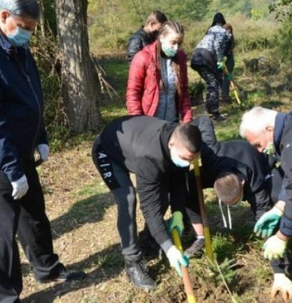 Nove sadnice u okviru projekta 'Inicijativa za zeleniju i održivu budućnost'