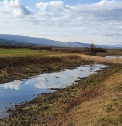 WWF Adria: 'Prikancu' iz Mostarskog blata prijeti nestanak