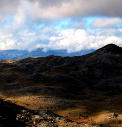 Međunarodni dan planina - Sačuvajmo planinsku bioraznolikost