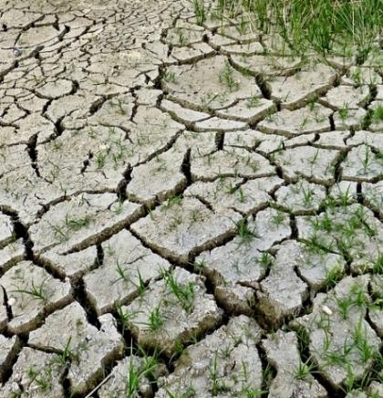 UNDP-ov 'Glas građana za klimu' - Većina građana poziva na široku akciju