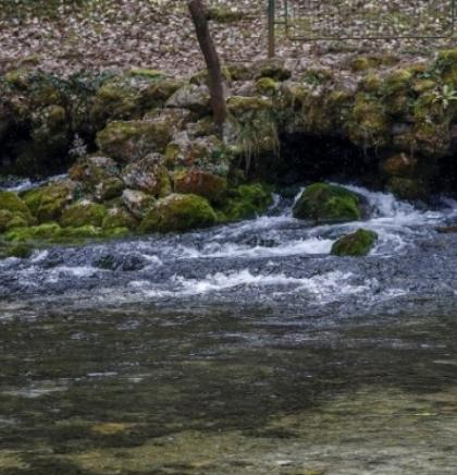 Usvojiti strogu ustavnu zaštitu vode i našeg prava na vodu