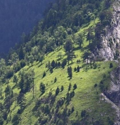 WWF Adria: Za skladnu budućnost potrebne su nam hitne mjere za ljude i prirodu