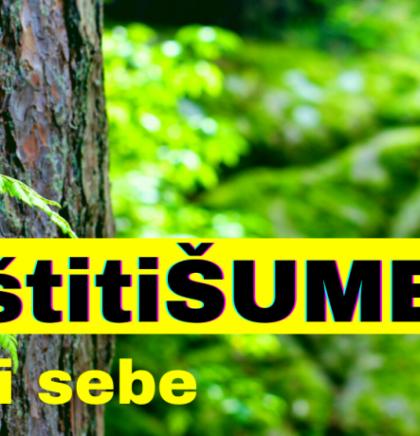 #ZaštitiŠume:Najlakše je optužiti vlast,šumare i političare,a šta je sa nama građanima!?
