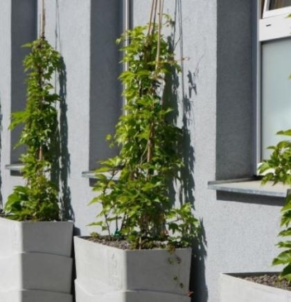 BeRTA moduli u Beču - Novi način ozelenjavanja grada
