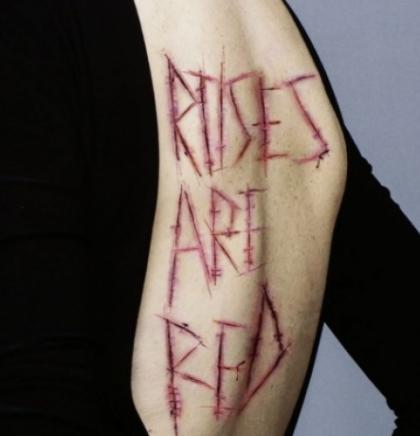 U Sarajevu otvorena umjetnička instalacija 'Roses are Red' autorice Amine Avdić