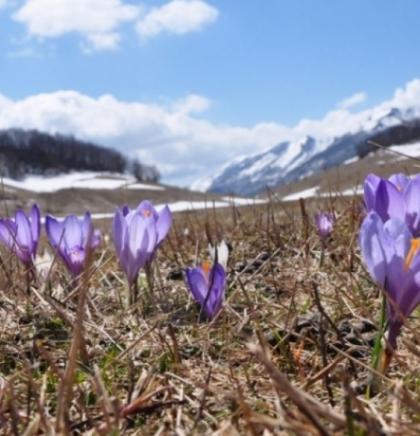 Zaštiti okoliš,zaštiti sebe: Ekološki fenomeni Bosne i Hercegovine
