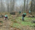 GoGreen u Mostaru: Na Fortici kreće sadnja tisuću stabala
