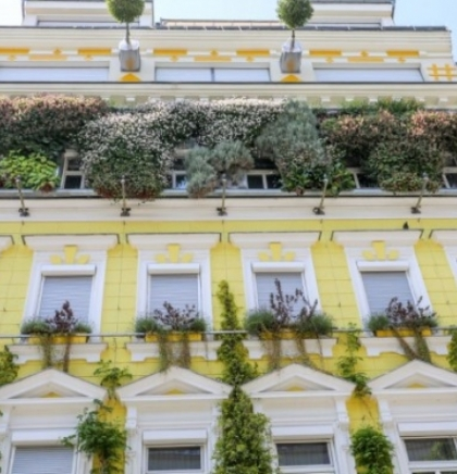 Bečke subvencije za zelene krovove do 20.200 eura