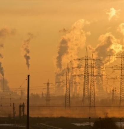 Istraživanje Bečkog univerziteta: Kako zaustaviti globalno zagrijavanje