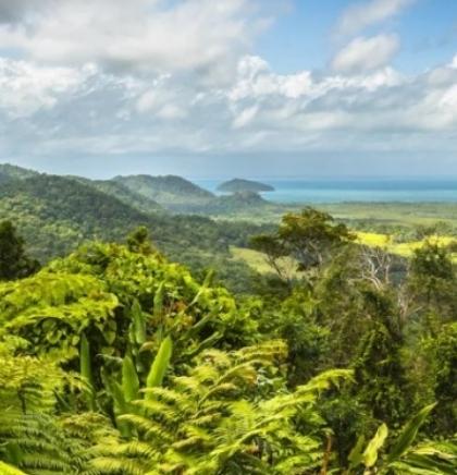 Australijska prašuma Daintree vraćena tradicionalnim vlasnicima