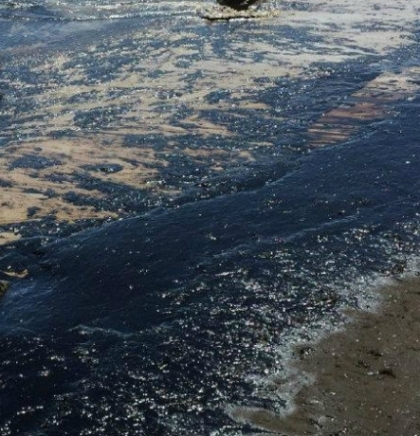 Blizu obale Kalifornija izlila se nafta, plaže pune mrtvih ptica i riba