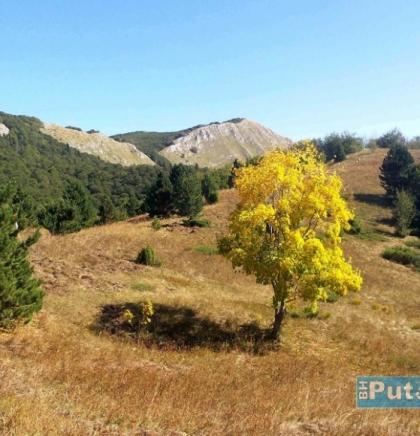 Zelengora, planina u sjeveroistočnoj Hercegovini - Najveći vrh je Bregoč 2014 mnv